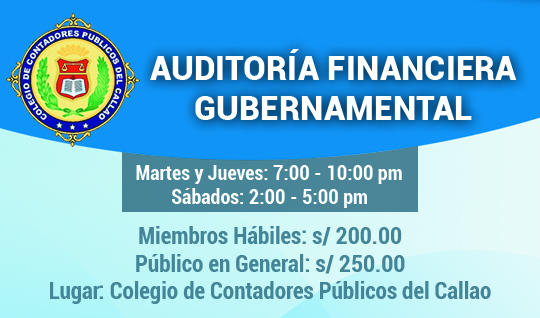 AUDITORIA FINANCIERA GUBERNAMENTAL